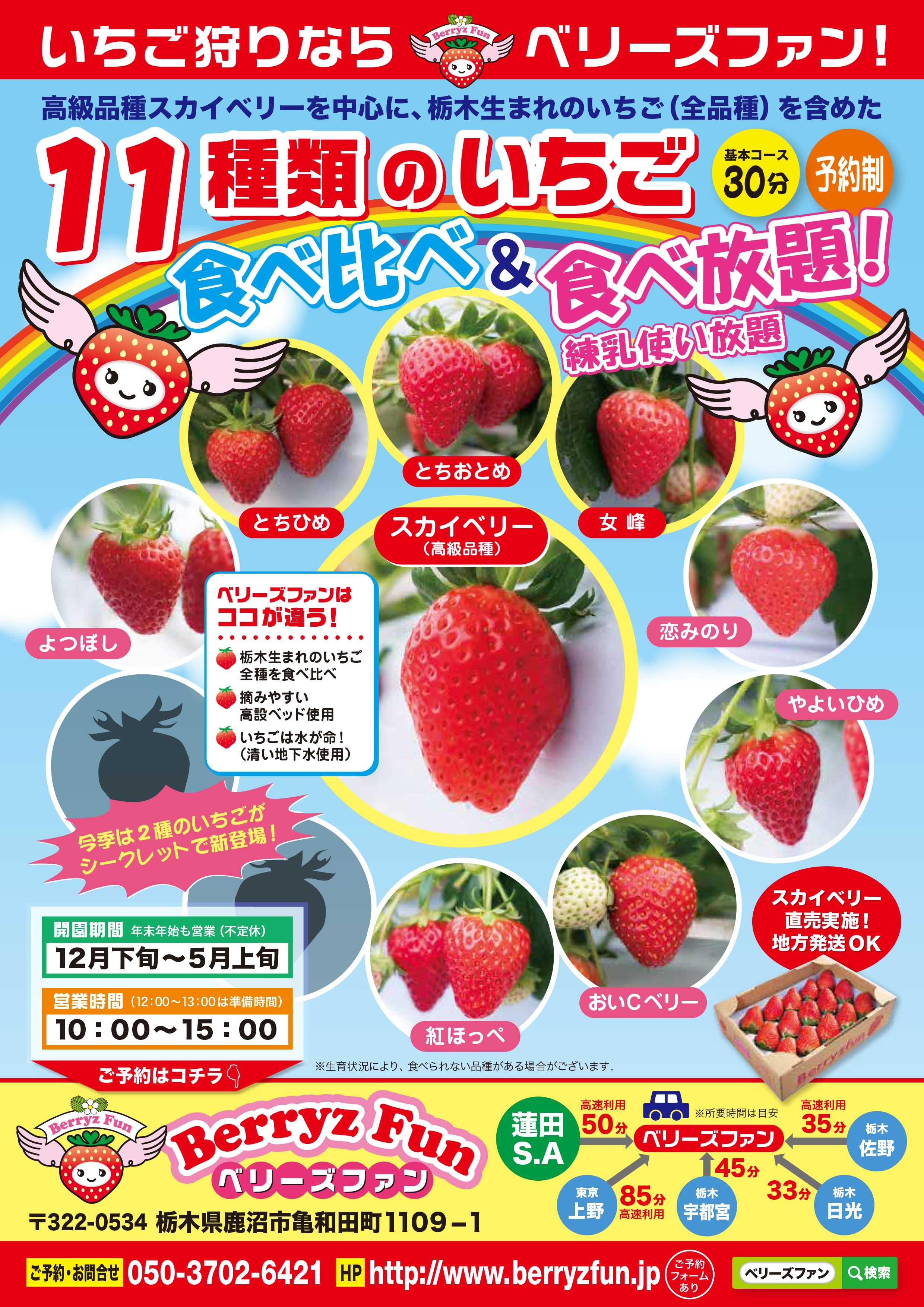 10種類イチゴ