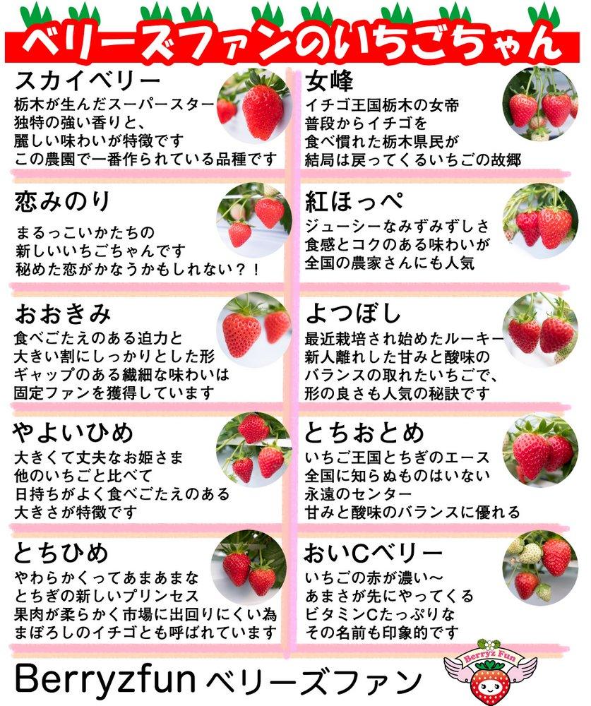 10種類食べ比べ